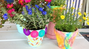pretty-pots-and-creative-containers-for-plants_hero