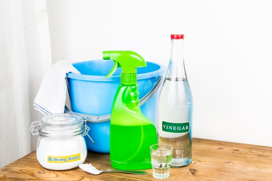 Cleaning Supplies - Bottles & Bucket